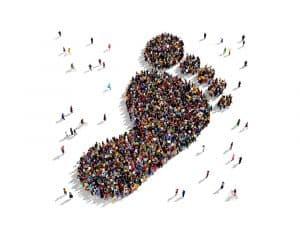 Milestone-350000-footprints-LCAs-Ecochain