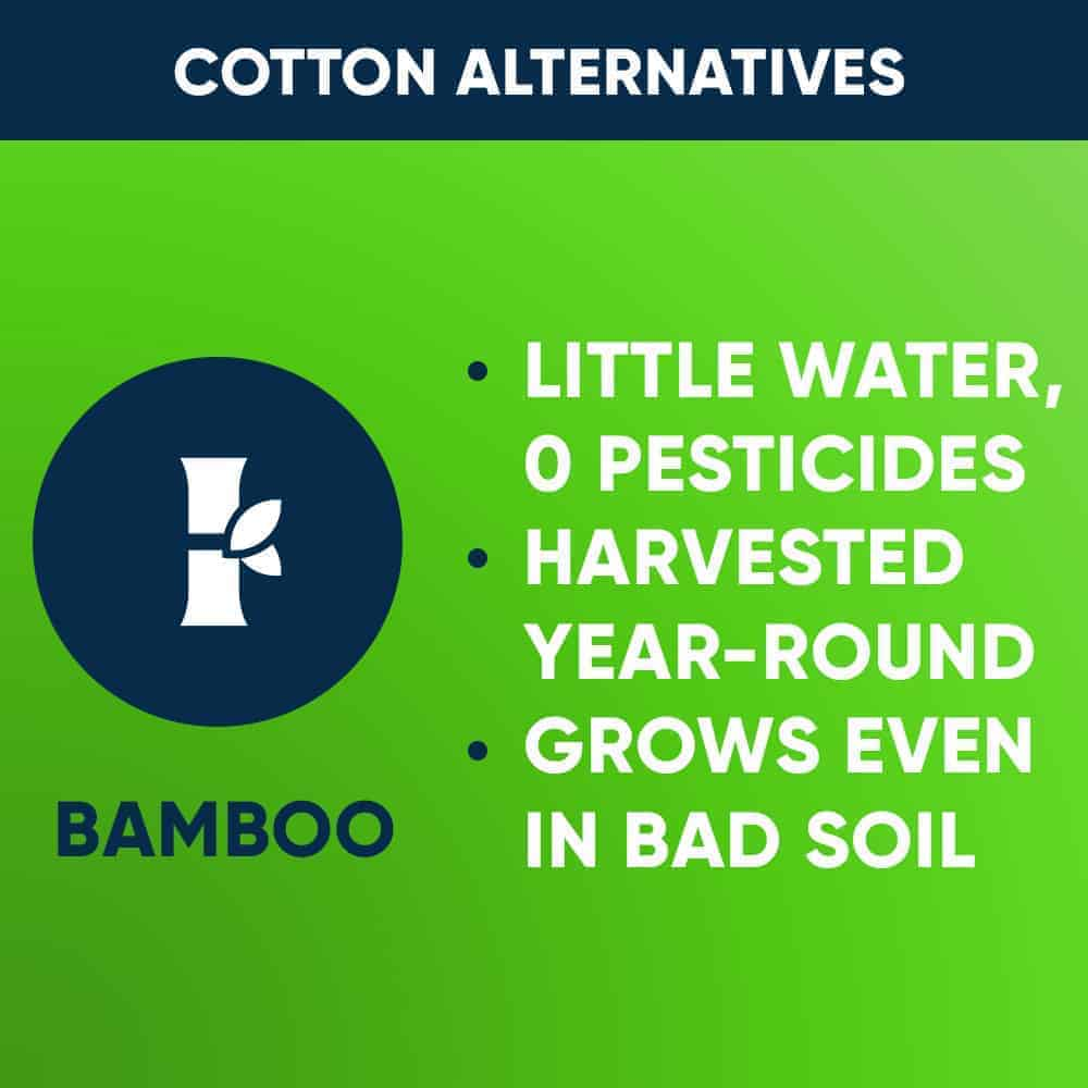 Cotton Alternative: Bamboo