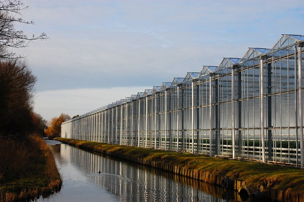 Greenhouses in The Netherlands - Photo by Colin Brace, flickr