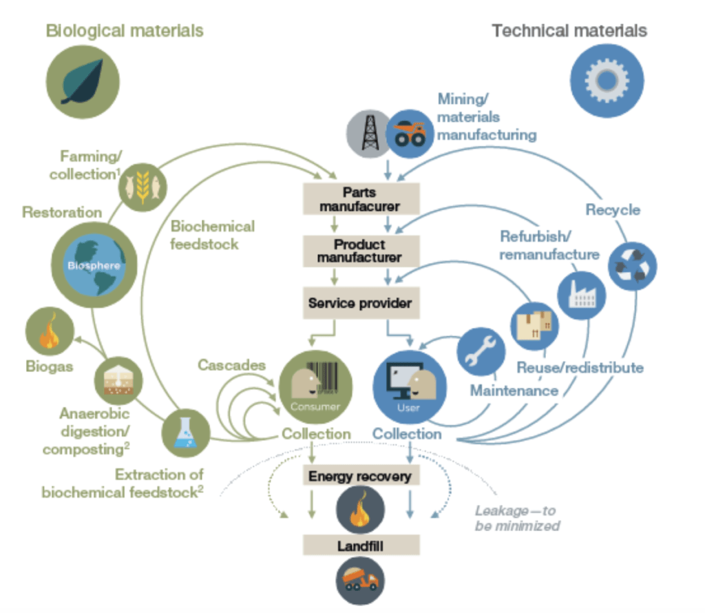 Whilst fossil fuel-based materials disrupt the natural cycles on earth- biobased materials are actually part of our natural cycles. Meaning: by using biobased resources- we aren't depleting our earth.